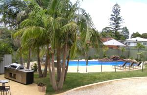 Koala Tree Motel Port Macquarie, NSW